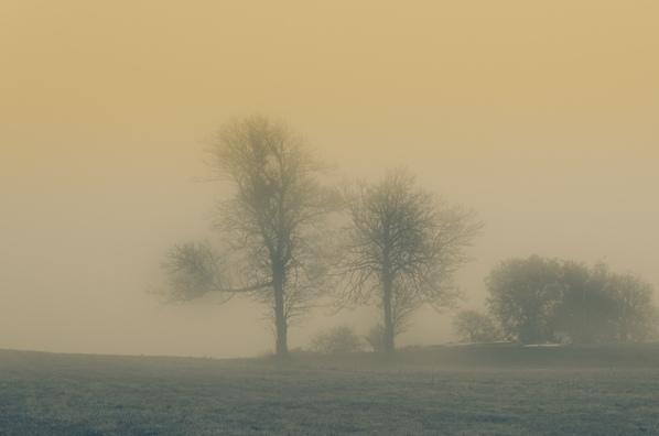 Foto: Peter Hill / pixelio.de